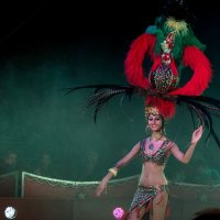 Zirkus :: Anna Schmel