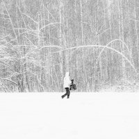 В Белое :: Ильдар Ситдиков