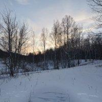Зимний лес засыпает :: Константин Кузнецов