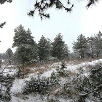 Зима...* :: Владимир Клюев