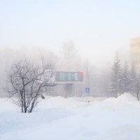 Туманное утро . :: Мила Бовкун