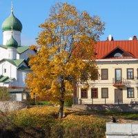 Золотая осень :: Николай Густов