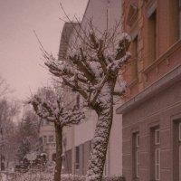 Уютное зимнее утро :: Vladimir Urbanovych