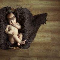 маленький принц :: alla skazova