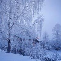 Морозное утро. :: Дмитрий Постников