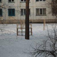 Уголок двора. :: Олег Афанасьевич Сергеев