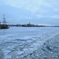 Нева  во льду :: Елена