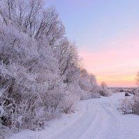 Зимняя дорожка. :: Hаталья Беклова