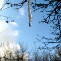 Скоро весна... :: Михаил Болдырев