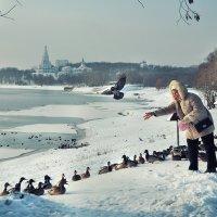 Хорошо, к примеру, утке – уток кормят иногда... :: Ирина Данилова