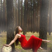 Полет в сосновом лесу :: Екатерина Шинкаренко