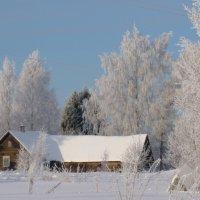 в деревне :: Светлана