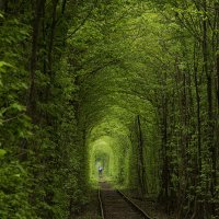 Тоннель любви :: Денис Тихонов