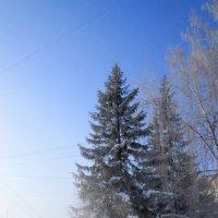...про туман ... Сибирь . :: Мила Бовкун