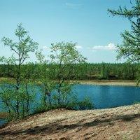 Природа Ямала :: Vasiliy Sorokhan