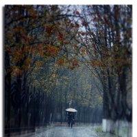 Холодный дождь :: Nina Streapan