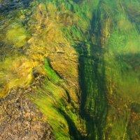 По камням течет вода :: Сергей Шаврин
