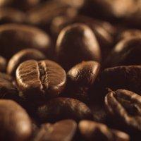 Кофе :: Александр Зенкин