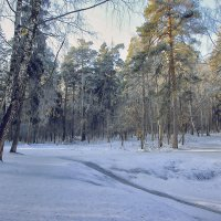 Ледяная горочка . :: ALISA LISA