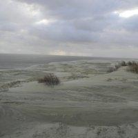 Дюна на Куршской косе, ветер :: Олег Романенко