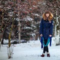 Зимняя нежность :: Сергей Краденов