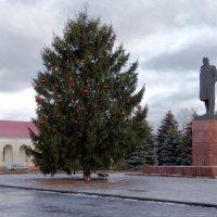 новогодняя ёлка :: Дмитрий .