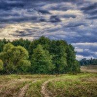 по дороге с облаками.... :: Наталья Золотарева