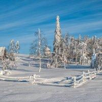 Мороз и солнце, день чудесный.. :: Владимир Чуприков
