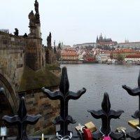 Красавица Прага :: 2сello Olga