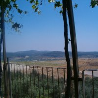 Вид из виноградной беседки!!! :: Герович Лилия
