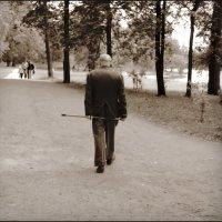 не пыльная прогулка :: sv.kaschuk