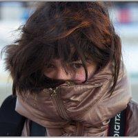 Мороз и солнце :: Михаил Розенберг