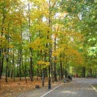 Осень в городском парке :: Елена Семигина