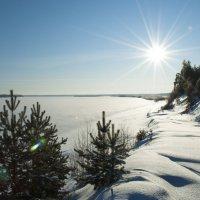 Северная Двина :: Олег Малетин