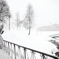 Зимняя графика :: Елена Строганова