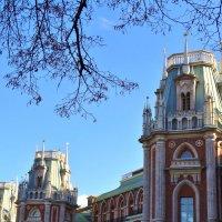 Башни царицинского Дворца :: Валентина. .