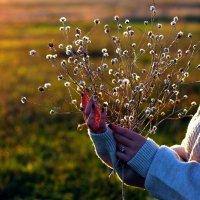 Осень на кончиках пальцев. :: Юлия Михайлова