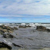 Северное побережье в сентябре :: Алексей Меринов