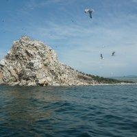 остров Беленький на Байкале :: СВЕТЛАНА БЕКЛЕМИШЕВА