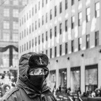 Неморозоустойчивый охранник :: Сергей Вахов