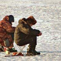 Два рыбака... :: Владимир Гилясев