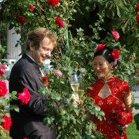 Венская  свадьба :: Николай Танаев