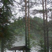 Утро. Туман :: Владимир Юдин