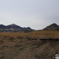 Горные вершины Кавминвод нынешней зимой почти без снега :: Vladimir 070549