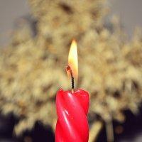 свеча :: vova8730