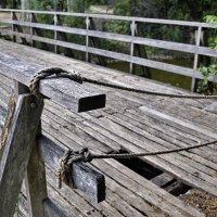 Мост для храбрых :: Николай Танаев