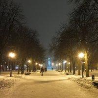 Зимний вечер в Саду Шевченко :: Наталья Тимошенко