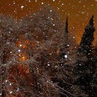 А снег идёт,а снег идёт... :: СветЛана D