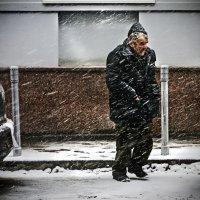 Некуда  идти :: Алексей Окунеев