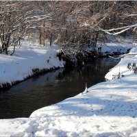 Лесной ручей... :: Тамара (st.tamara)